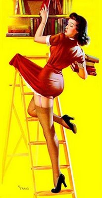 librarian-ladder-pin-up